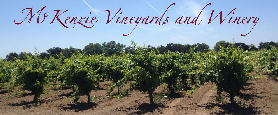 McKenzie Vineyards and Winery